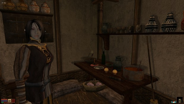 Elder scrolls online no first person in academic writing