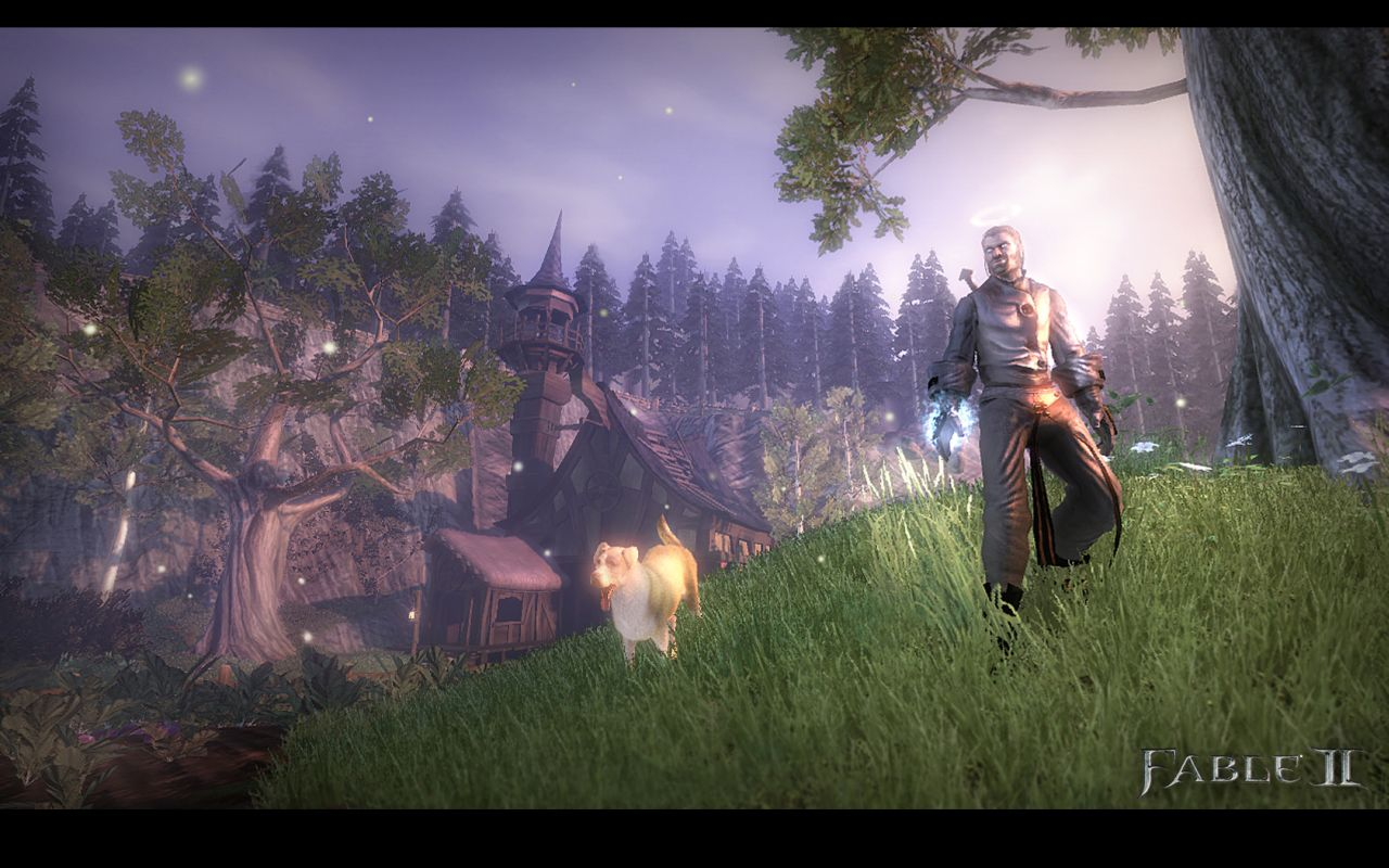 Image result for fable 2 for pc