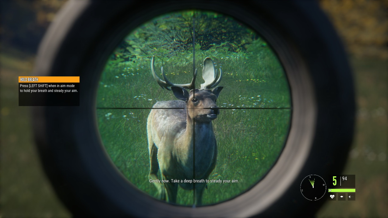 Game Trainers: THEHUNTER: CALL OF THE WILD V1 14 (+13