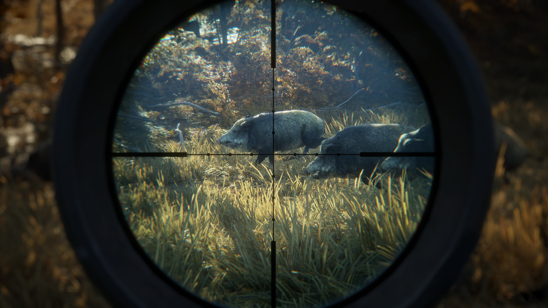 the hunter call of the wild free download mega