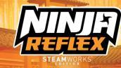 Ninja Reflex: Steamworks Edition