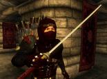 Ninja Mod v1.1